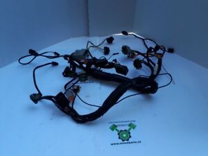 HD -06 FLTR Interconnect wiring harness - OEM 70274-06 - ID 1122