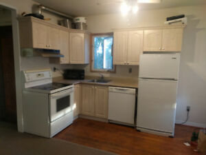 Complete kitchen for small apartment or basement