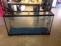 50 gal fish tank