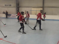 Ball Hockey NHL rink $50/hr book it now! SPECIAL!