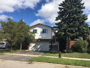 Living In Style In Central Brampton! Renovated 3 Bdrm Detached