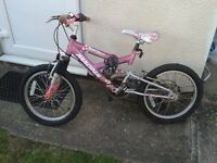 Girls Bicycle (suit 4-7 years old)