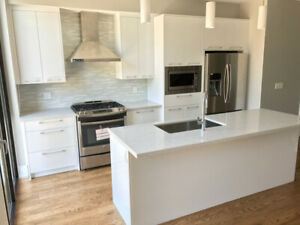 Kitchen remodelling, cabinet doors, spray painting