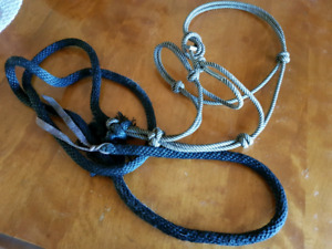 Rope Halter & Attached Lead