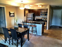 FULLY FURNISHED CONDO IN WALKER LANDING!!!