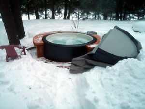 Worlds Most Efficient Softub Hot Tub as Low as $3200.00 Windsor Region Ontario image 2
