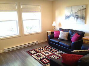 Furnished 2 Bedroom Apartment in Clarenville St. John's Newfoundland image 2
