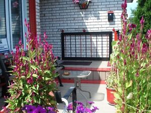 WANTED 2 USED WROUGHT IRON RAILING SECTIONS -8FT EACH