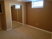 Spacious 2 bdrm bsm suite in Millwoods - Insuite Laundry!
