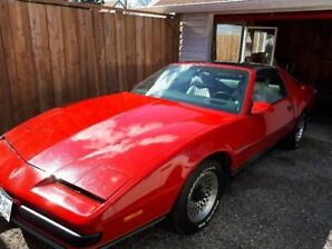 1987 Firebird for sale