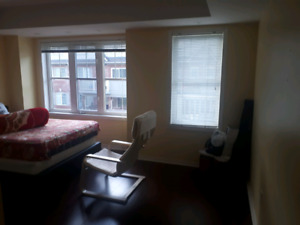 Master bedroom for rent in a 2 bedroom condo apartment