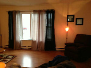 Room for rent in 2 bedroom apartment near Octagon Pond