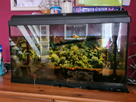 FISH TANK WITH EQUIPMENT 110L
