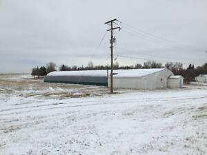 Curling Rink For Sale by Tender