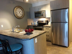 Brand New Apartments for Rent – September 1st Gasoline Alley