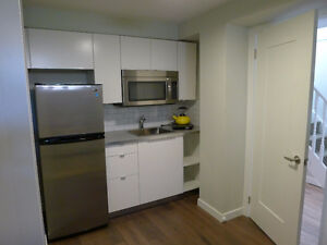 Gorgeous Newly Renovated Furnished Bachelor - 260SF Yonge/Finch London Ontario image 4