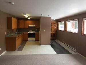 Salmon Arm 3 bdr w/o basement suite