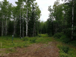 Aspen Ridge by Candle lake lot for sale