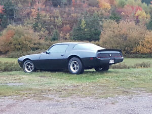 1979 trans am/formula no rust