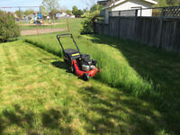 BLADE LAWN      Servicing Sarnia and Area.