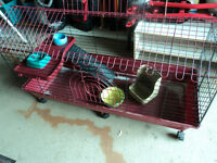 guniea pig or bunny cage and dishes