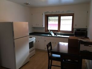 Apartment For Rent Sarnia Sarnia Area image 3