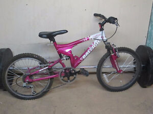 Youth Mountain Bike for Sale