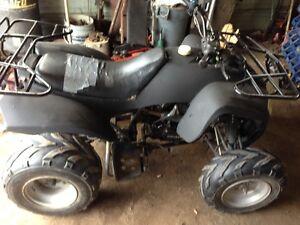 2005 Pioneer 200 Quad