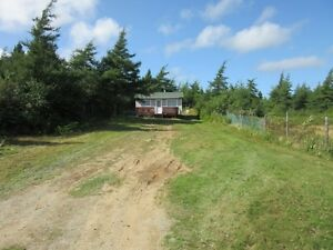Cabin on Country Pond Road in Bay Roberts - MLS 1135752 St. John's Newfoundland image 10