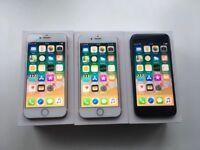 iPhone 7 x 3