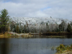 *60 acres with a small private lake with trout , We are a few m
