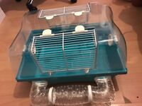 Dwarf hamster full setup with accessories