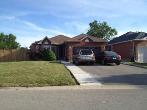 3bdr/1wsh Basement apartment in Raised Bungalow