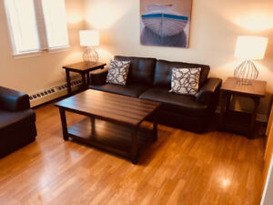 Furnished 1 Bdrm Apartments available Sept 1st Downtown Chtown