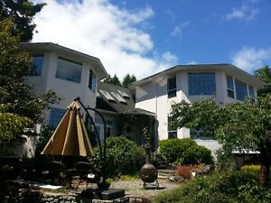 March 18-25-$350.-Furnished Rm w Private Bathrm-EXECUTIVE STYLE