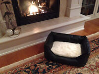 $85 · NEW Pet bed to pamper your pet in style!