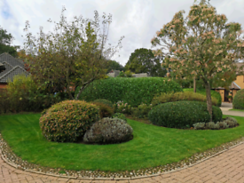 Red Robin Landscapes - Garden maintenance services