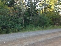 I have 5 acres, on Webb rd 15min to wentworth!
