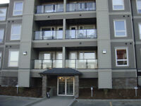 Furnishd 2 bedrm Condo Apt.in Stonebridge.Sasktn; Avail. July 18