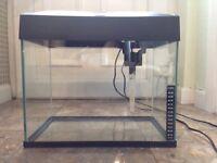 Clean 30L fish tank