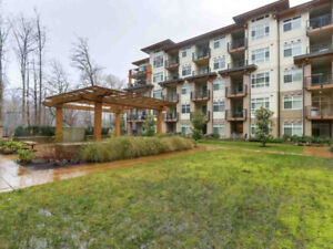 Stunning Quantum Properties in Coquitlam!!Must Visit now!!