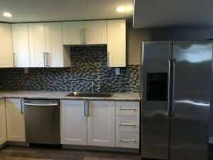 2-Bed Basement apartment, utilities included (Hamilton Mountain)