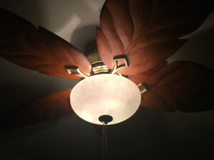 Hampton Bay wooden Tropical ceiling fan/light.