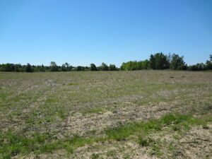 100 Acre Certified Organic Farm - Owen Sound