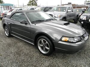 2003 Ford Mustang GT 5 Speed Convertable Convertible Low Kms!