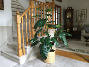 Beautiful artificial Philodendron in a solid copper planter