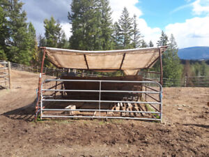 Ranch metal panels and gate