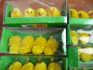 Chicks, Chicks, And More Chicks For Easter London Ontario image 2