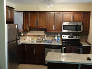 Beautifully furnished 1 bedroom condo apartment w/ parking spot