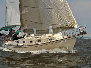 Looking to buy your sailboat